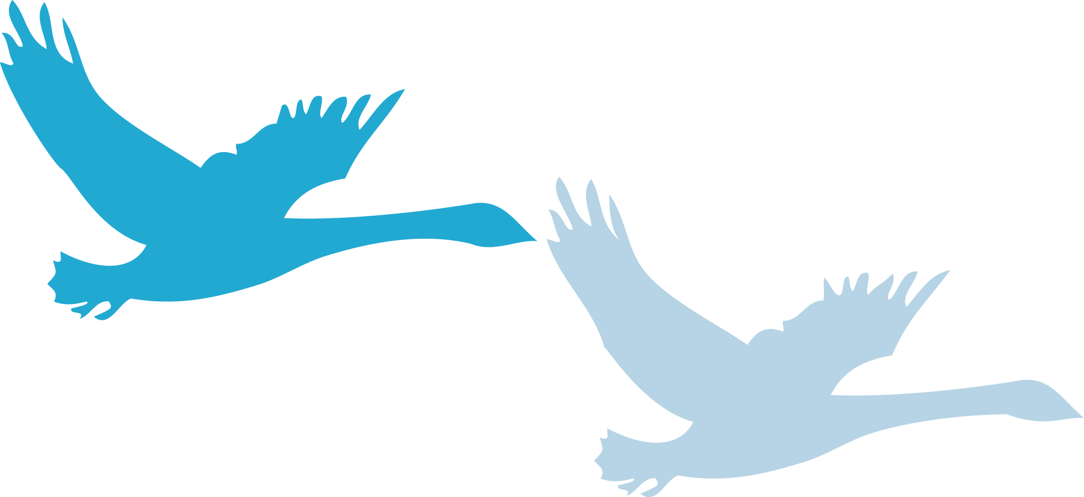 Pulborough Parish Council logo - two swans flyers in two shades of blue